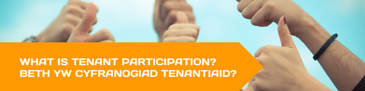 What is tenant participation?
